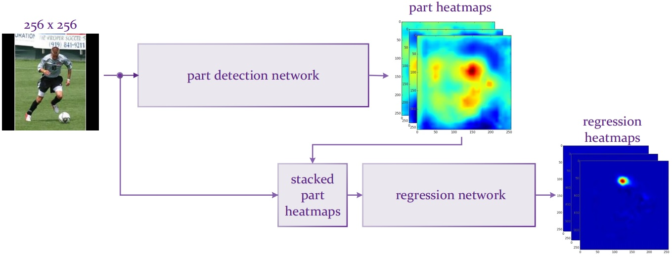 Convolutional Part Heatmaps regression
